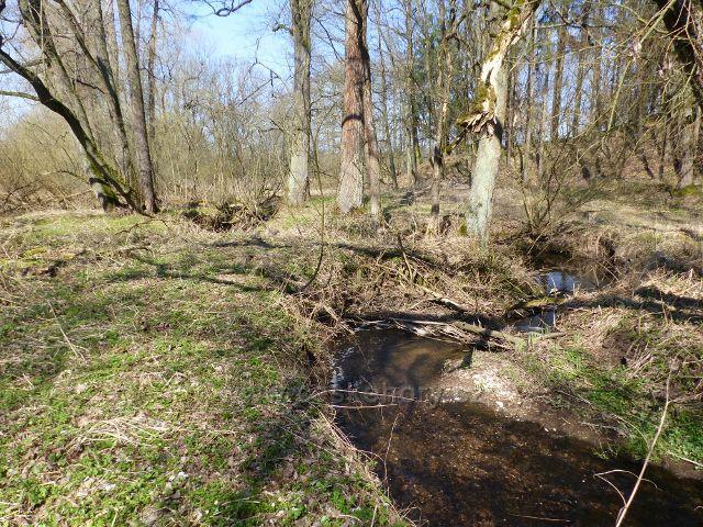 Helvíkovice - Horecký potok