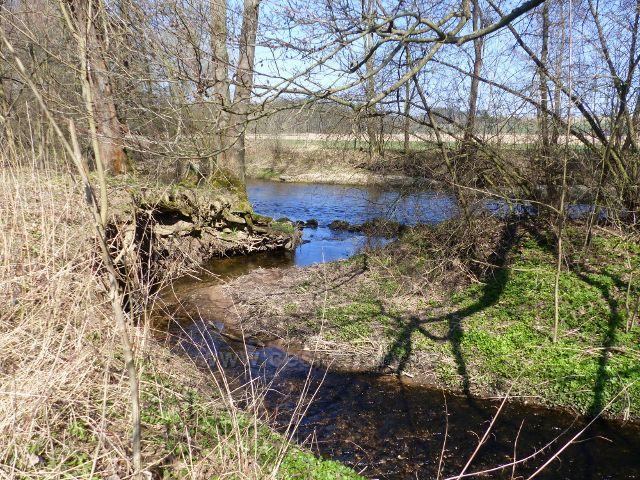 Helvíkovice - Horecký potok se vlévá do Divoké Orlice