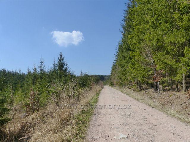 Helvíkovice - cesta po modré TZ do Bohousové pod Homolí