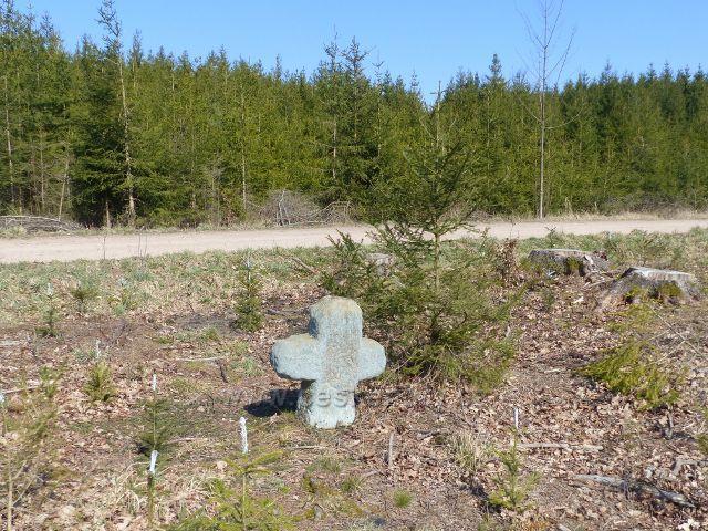 Helvíkovice - smírčí kříž u cesty po modré TZ do Bohousové