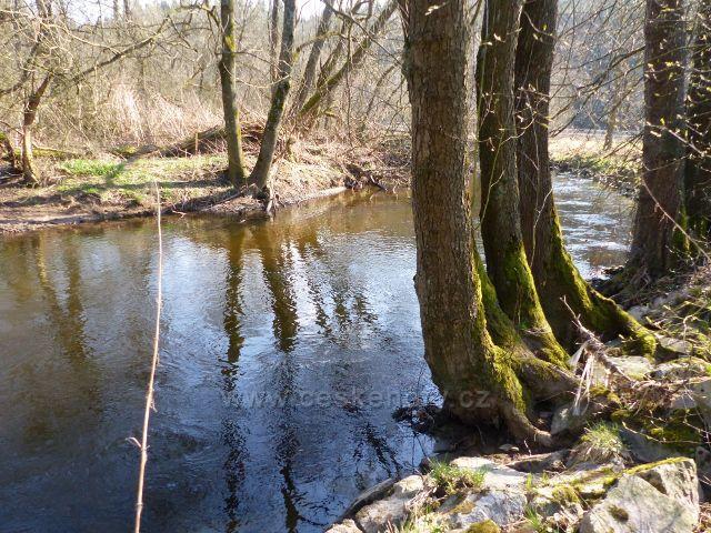 Přírodní park Orlice pod Helvíkovickým rybníkem