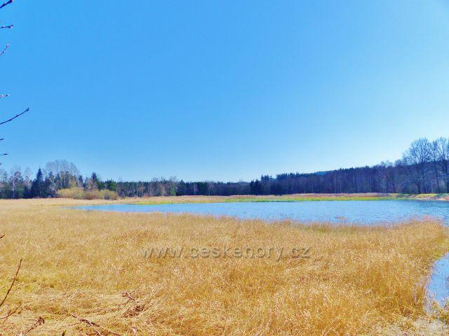 Helvíkovický rybník