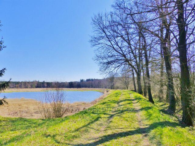 Hráz Helvíkovického rybníku