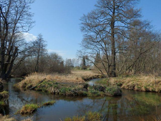 Mokřady u Milov