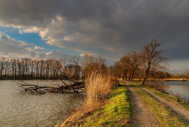 Mezi rybníky v Jistebníku