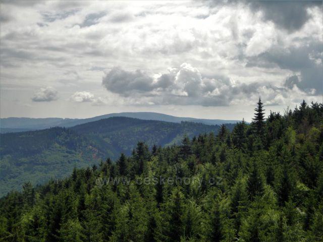 Zlatohorská vrchovina - v pozadí Příčný vrch