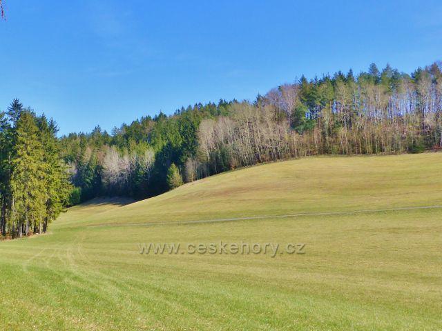 Dlouhoňovice - pohled na úbočí vrchu Na Vrších