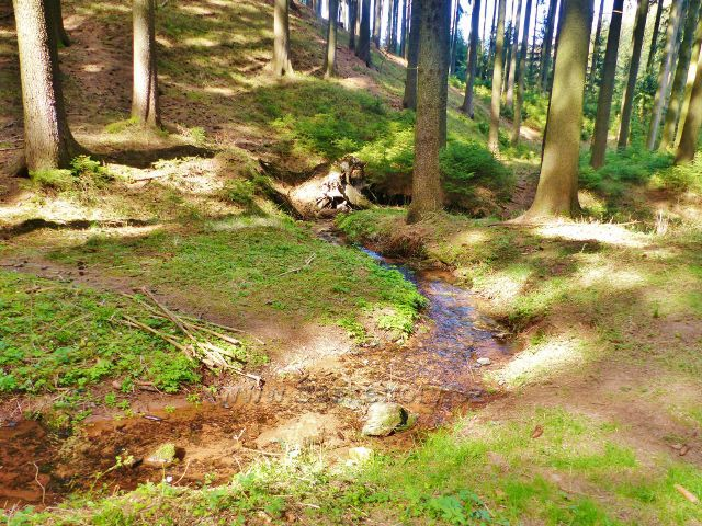 Dlouhoňovice - drobné meandry Horeckého potoka na úpatí Přímu