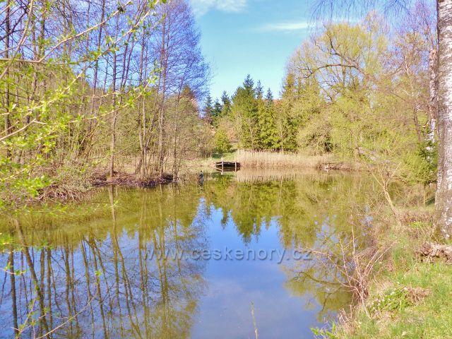 Helvíkovice - rybník u silničky do České Rybné
