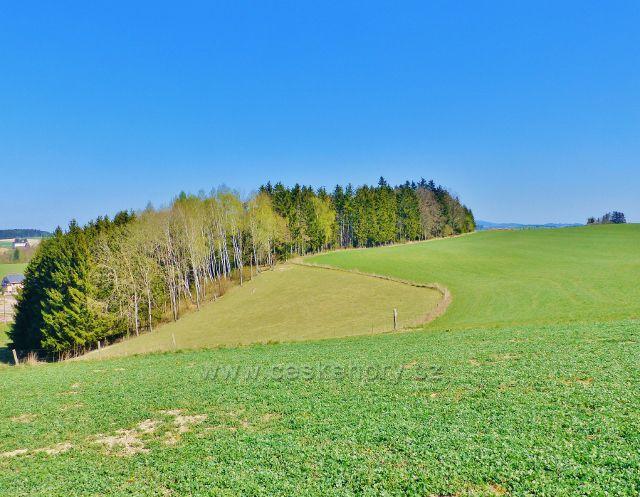 Líšnice - partie před zemědělským letištěm