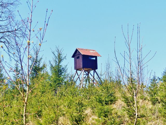 Žamberk - pohled z úpatí vrchu Na Veselíčku na posed na okraji lesa