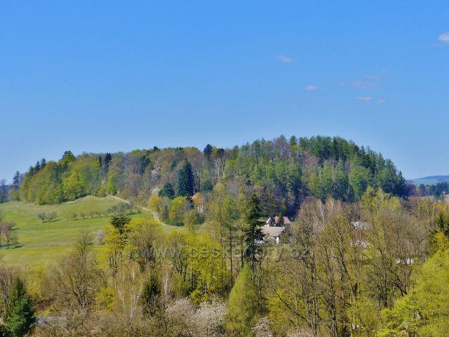 Kunvald - pohled ze silničky z Končin na Krejsův kopec (497 m.n.m.)