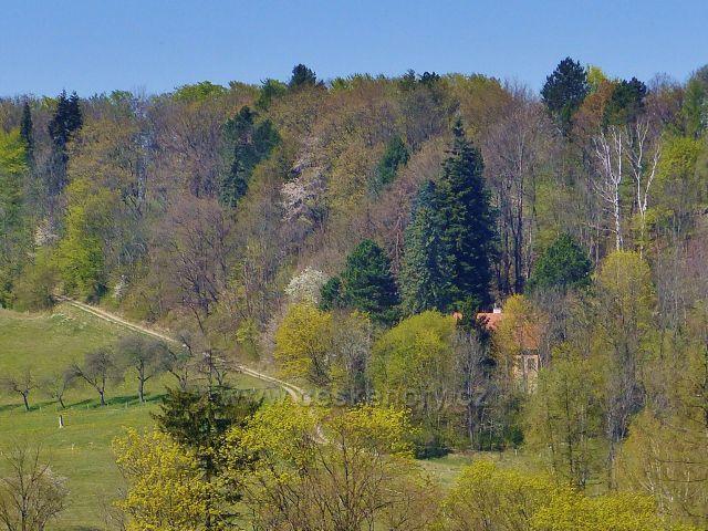 Kunvald - pohled k vile významného přírodovědce Prof.Františka Bílka, která stojí na úbočí Krejsova kopce.