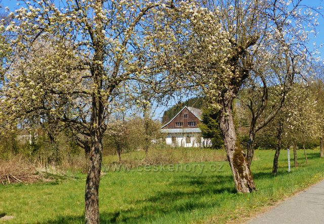 Kunvald - podhorská chalupa se zahradou u cesty ke Keprtovu mlýnu
