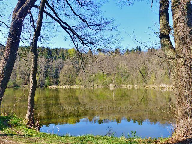 Žamberk - Dymlovský rybník