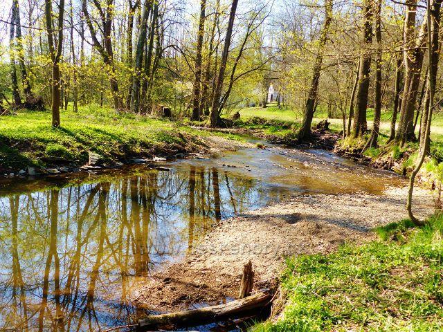 Žamberk - Rokytenka pod Dymlovským rybníkem