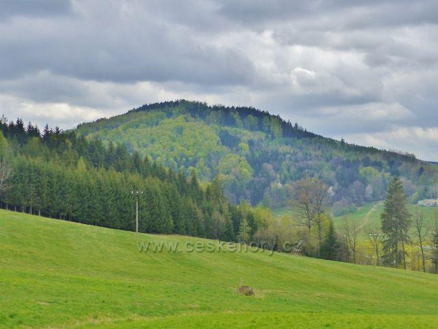 Bohousová - pohled na litický Chlum(603m.n.m.)