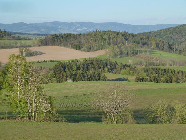 Pohled z úbočí Studeného k Mlýnskému vrchu nad Mladkovem. V pozadí masiv Králického Sněžníku