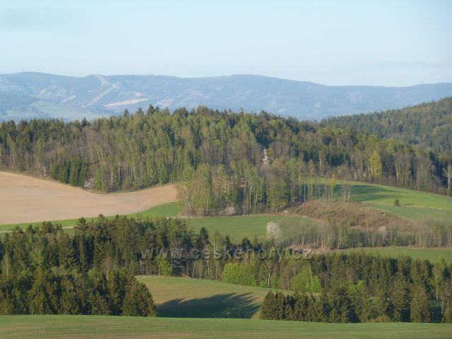 Studené - pohled z úbočí vrchu Studený na Mlýnský vrch a úbočí Vysokého kamene. V pozadí pásmo Králického Sněžníku