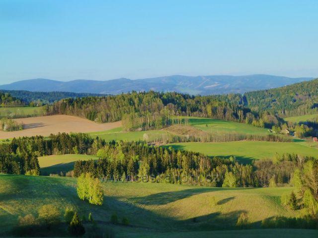 Pastviny nad Celným. Na obzoru masív Králického Sněžníku