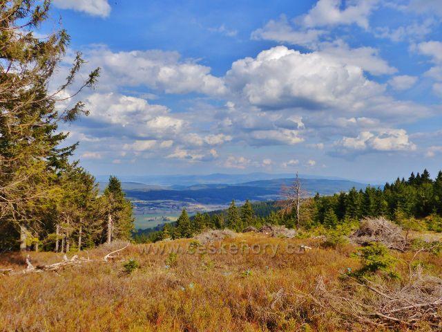 Těžba dřeva pod Jiráskovo cestou na Velkou Deštnou  umožnila vznik nového vyhlídkového místa umožňujícího pohled přes Orlické Záhoří do polského příhraničí