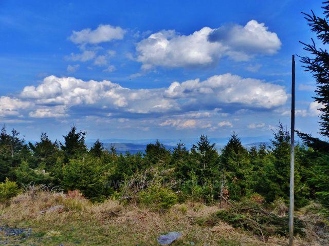 Rozhledu z Jiráskovy cesty již brání vzrostlý okolní lesní porost
