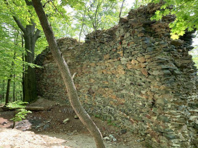 Pozůstatky hradu