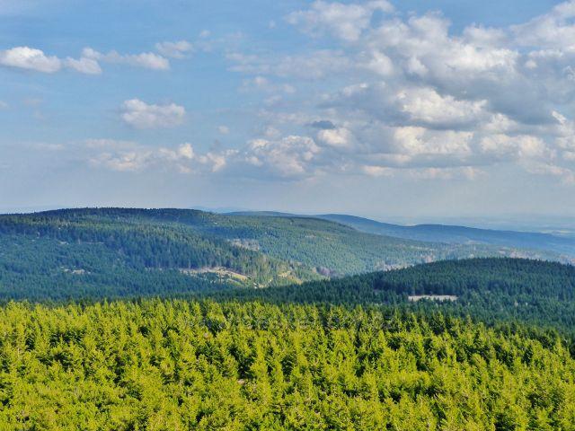 Pohled z rozhledny Velká Deštná na hlavní hřeben Orlických hor, ke Kunštátské kapli a Pětirozcestí