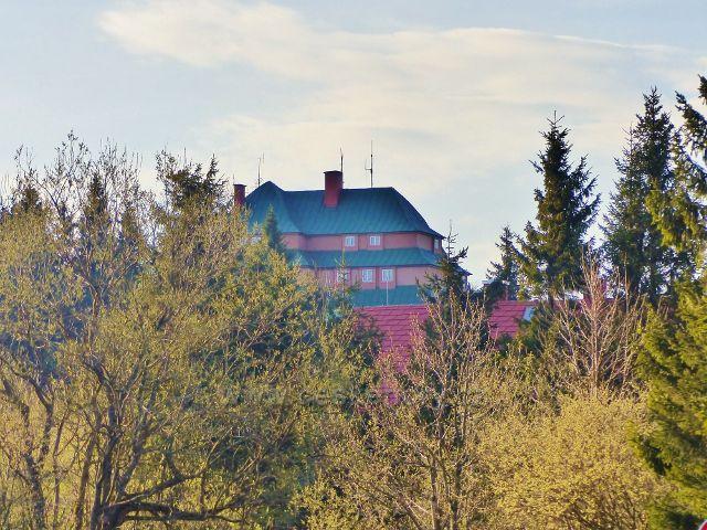 Pohled k Masarykově chatě z okraje lesa nad sedlem Šerlich