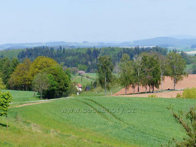 Pohled od arboreta Žampach k Písewčné