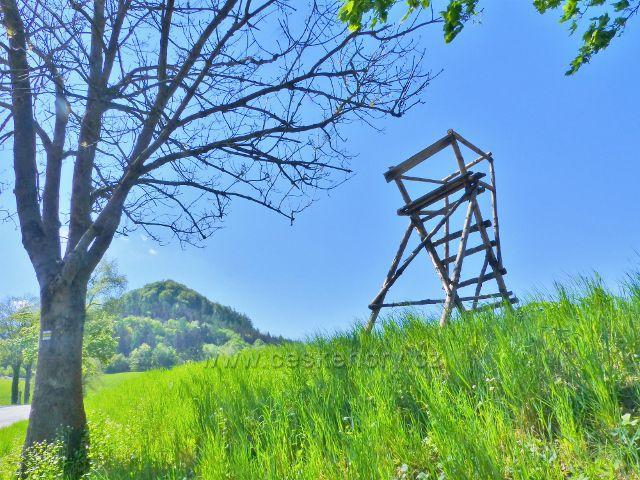Posed u rozcestí nad Písečnou. V pozadí vystupuje vrch Žampach