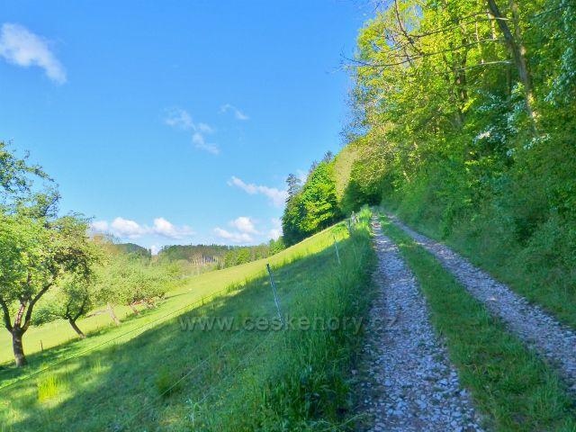 Kunvald - cesta na vrchol Krejsovo kopce
