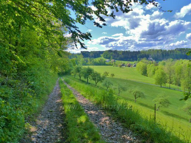 Kunvald - cesta z Krejsovo kopce