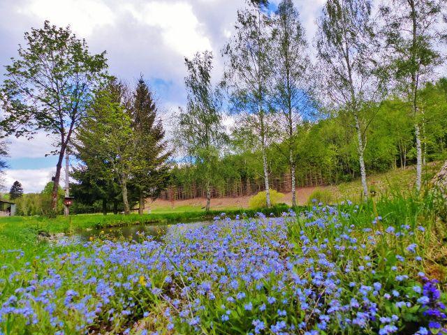 Kunvald - pomněnky u rybníku na Rokytence