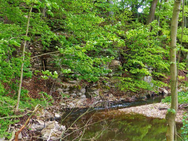 Kunvald - Rokytenka pod rybníkem na Rokytence