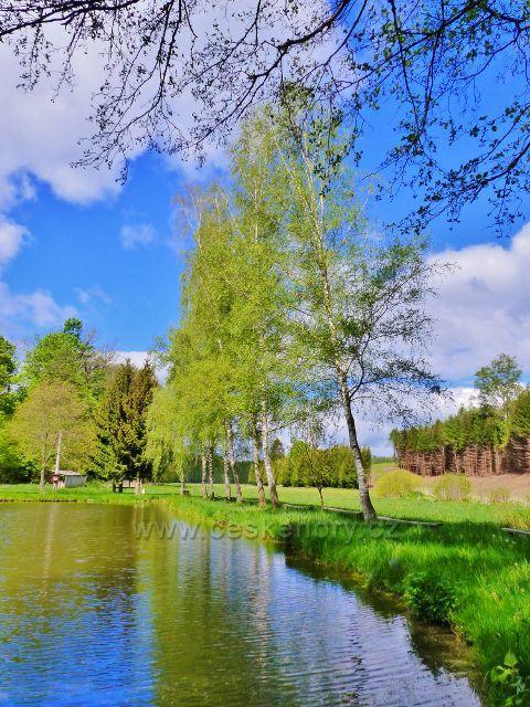Rybník na Rokytence pod Krejsovo kopcem v Kunvaldu