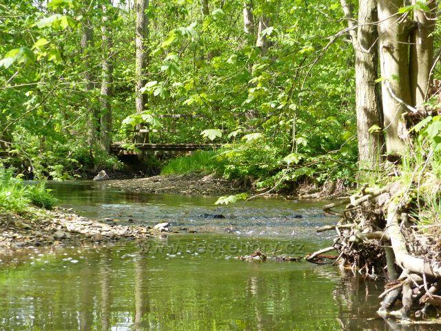 Rokytenka pod rybníkem v Kunvaldu