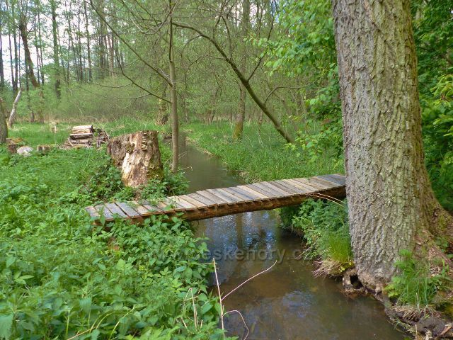 Mostek přes náhon z Rokytenky na Lauterbachův mlýn(přítok Dymlovského rybníku)