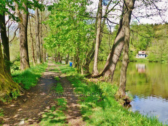 Žamberk - hráz Dymlovského rybníku