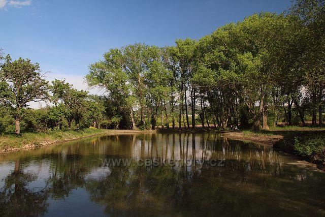Rybníček u Hrobčic