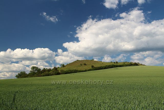Mlýnský vrch u Libčevsi