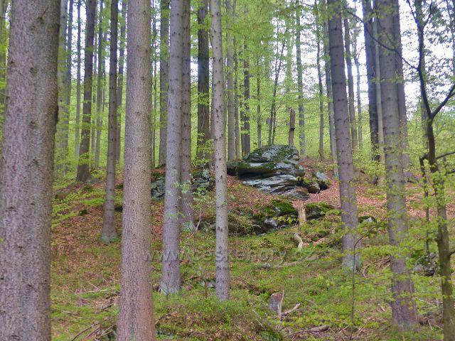 Skalní výchoz nad levým břehem Kunčického potoka
