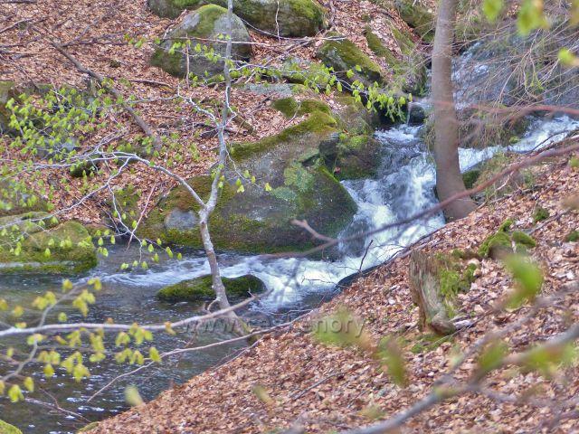 Partie se značným spádem Kunčického potoku
