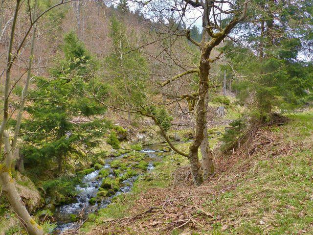 Údolí Kunčického potoku se pod Medvědí boudou více otevírá