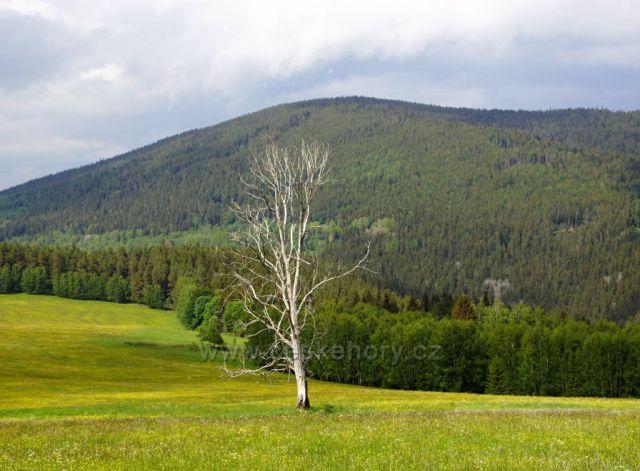 Hora Křemelná