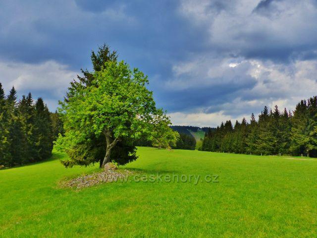 Pohled do sedla Pod Větrovem z úbočí Větrova. Na obzoru je chata Paprsek