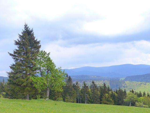 Pohled z vrchu Větrov k Jeseníkům