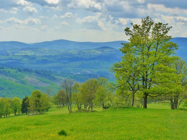 Sestup po zelené TZ z Větrova (918 m.n.m.) ke Starému kopci (830 m.n.m.)