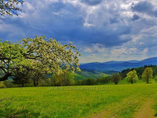 Pohled ze Starého kopce k Hanušovické pahorkatině