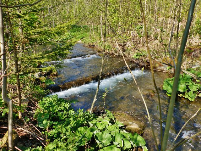 Vrbenský potok